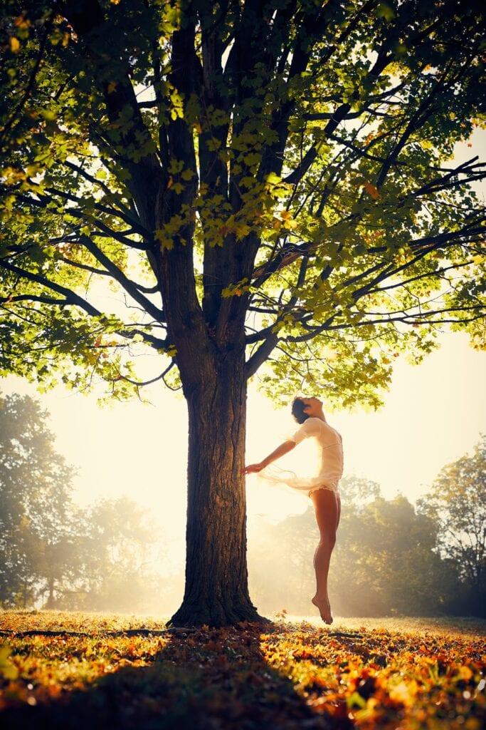 yoga yogaens atte ulike ledd 5