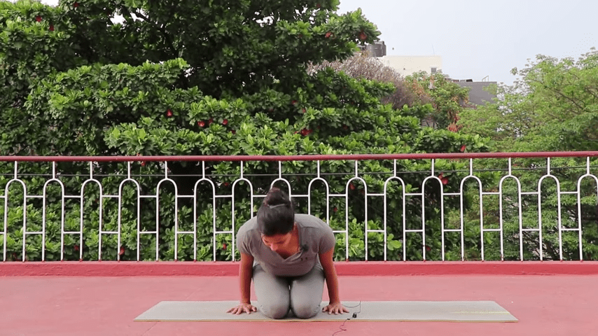 Day 1 of 4 days Bakasana Practice How to practice Crow Pose Yoga For Beginners 2 20 screenshot