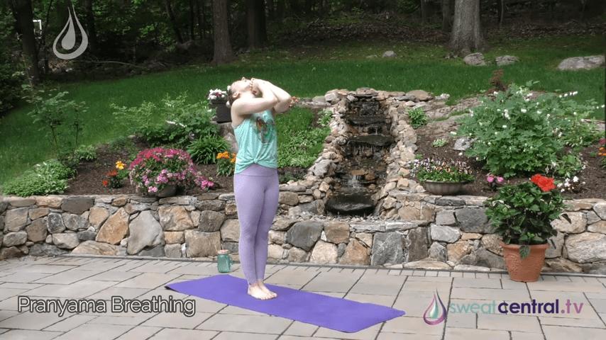 Bikram Yoga Class 30 Minutes. All 26 Bikram Yoga Postures 0 25 screenshot