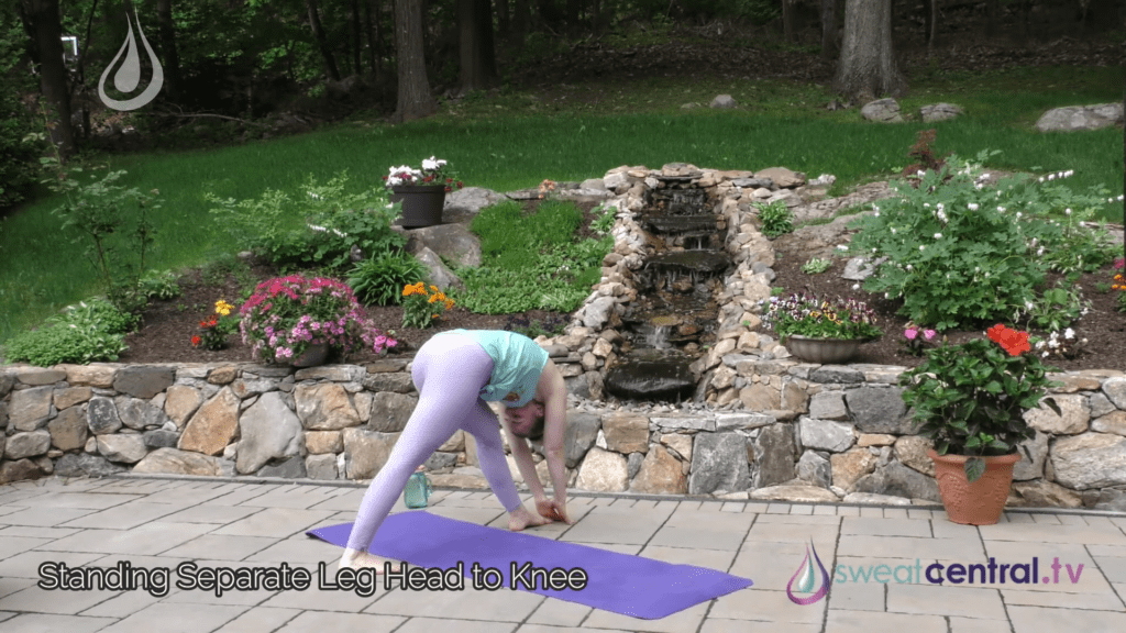 Bikram Yoga Class 30 Minutes. All 26 Bikram Yoga Postures 13 39 screenshot
