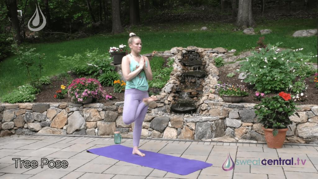 Bikram Yoga Class 30 Minutes. All 26 Bikram Yoga Postures 14 24 screenshot