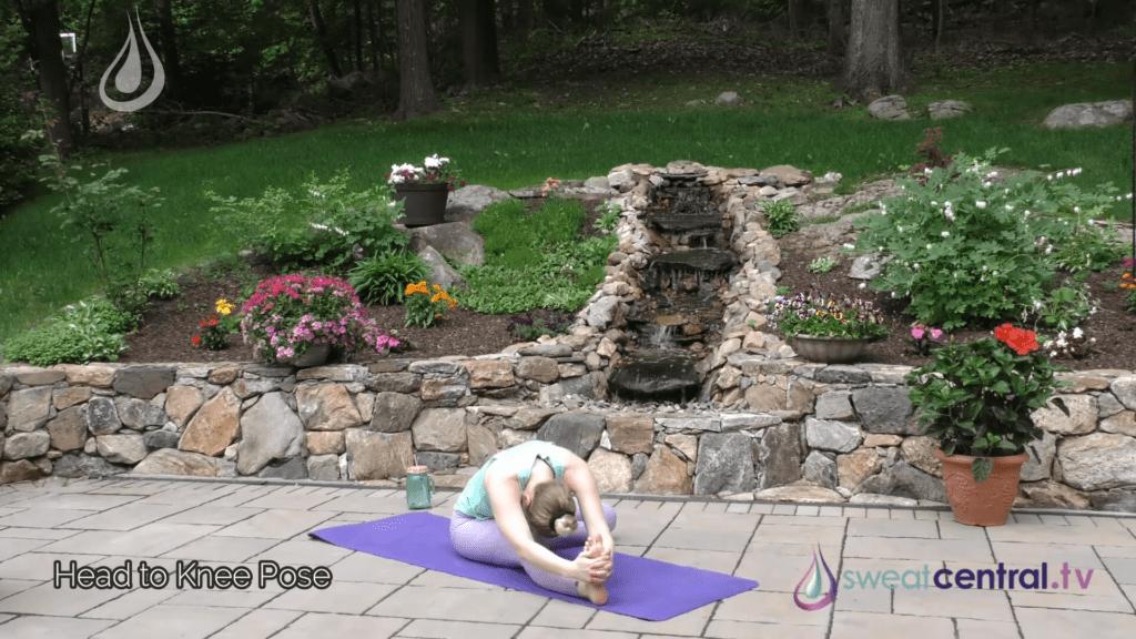 Bikram Yoga Class 30 Minutes. All 26 Bikram Yoga Postures 26 35 screenshot
