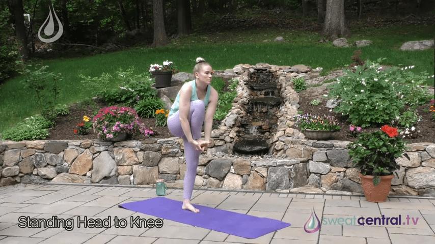Bikram Yoga Class 30 Minutes. All 26 Bikram Yoga Postures 7 20 screenshot