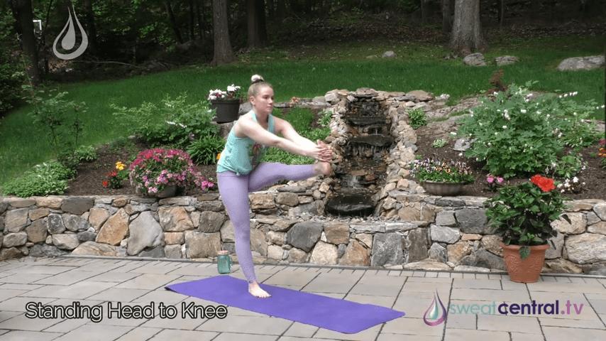Bikram Yoga Class 30 Minutes. All 26 Bikram Yoga Postures 8 12 screenshot