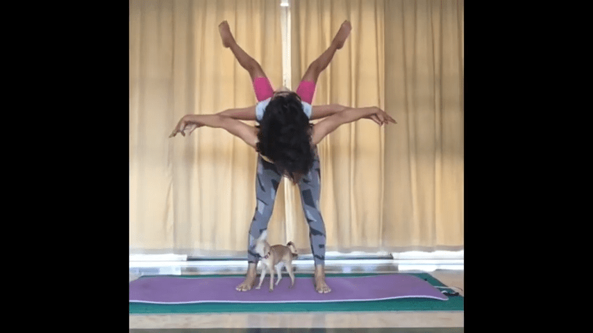 Acroyoga med barn – steg for steg