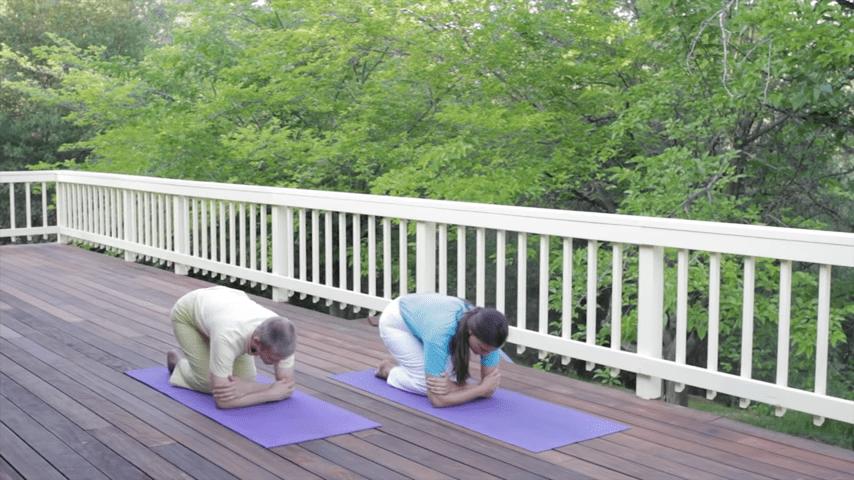 Sivananda Yoga Asana Sequence in 12 Basic Postures 0 28 screenshot