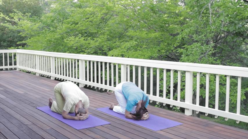 Sivananda Yoga Asana Sequence in 12 Basic Postures 0 31 screenshot