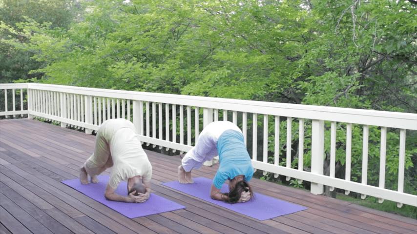 Sivananda Yoga Asana Sequence in 12 Basic Postures 0 33 screenshot