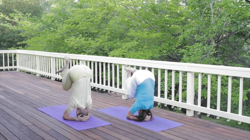 Sivananda Yoga Asana Sequence in 12 Basic Postures 0 37 screenshot