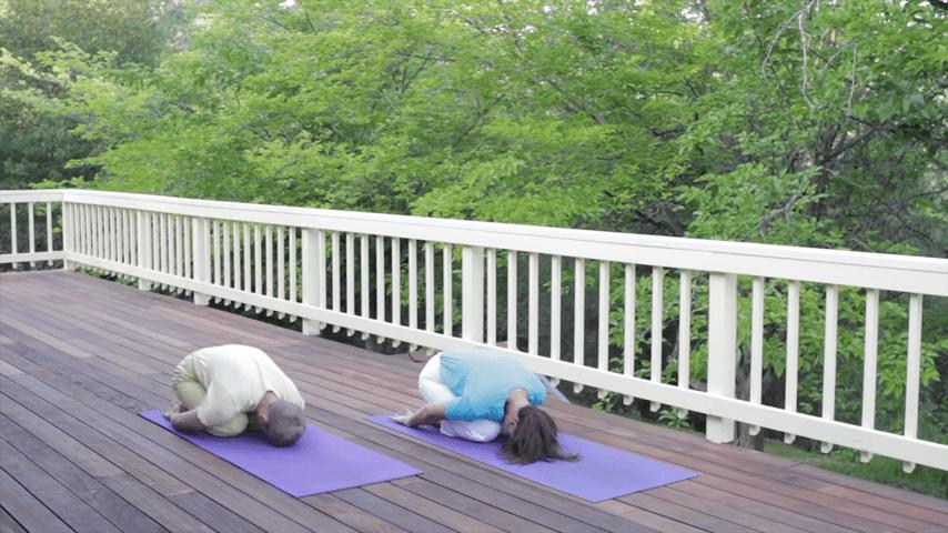 Sivananda Yoga Asana Sequence in 12 Basic Postures 0 59 screenshot