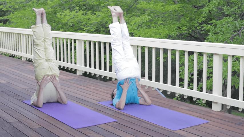 Sivananda Yoga Asana Sequence in 12 Basic Postures 1 17 screenshot