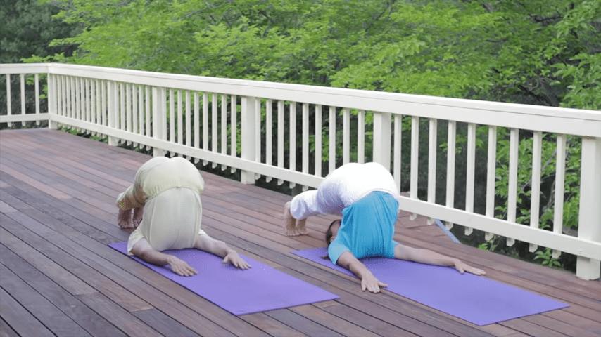 Sivananda Yoga Asana Sequence in 12 Basic Postures 1 30 screenshot