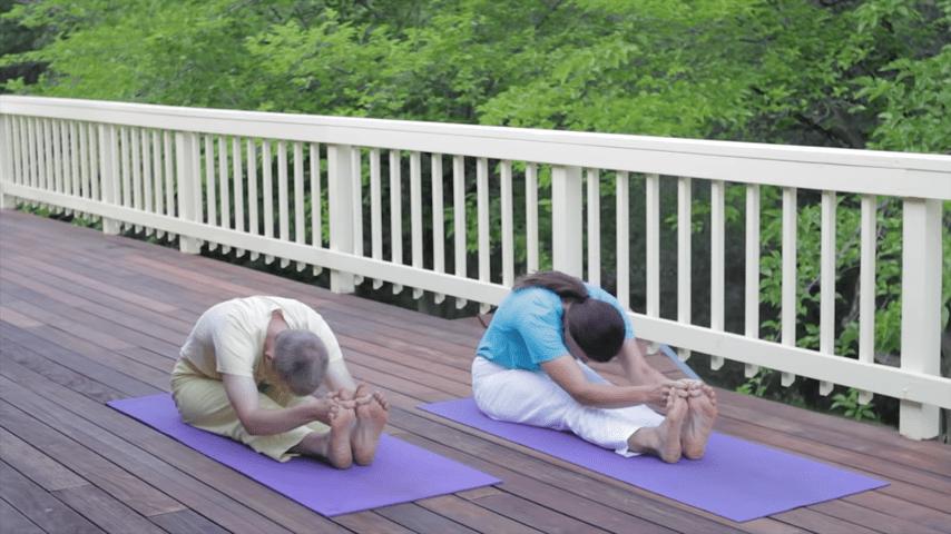 Sivananda Yoga Asana Sequence in 12 Basic Postures 2 27 screenshot