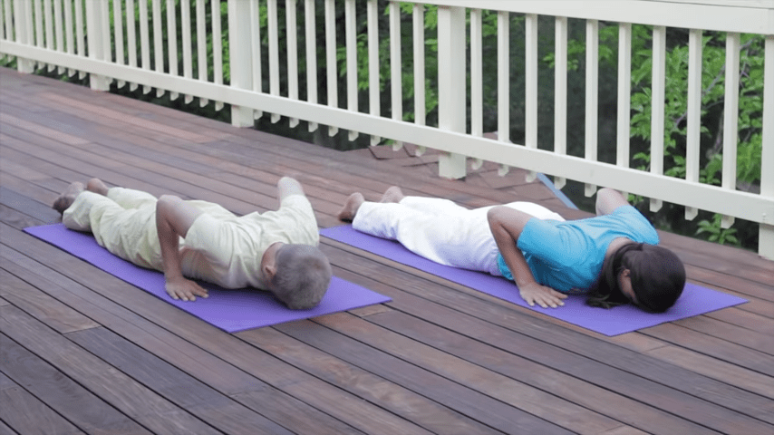 Sivananda Yoga Asana Sequence in 12 Basic Postures 2 55 screenshot