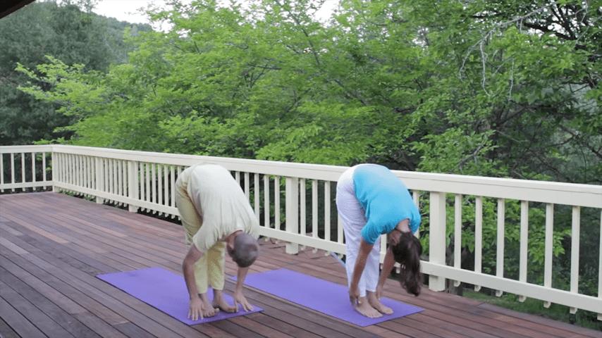 Sivananda Yoga Asana Sequence in 12 Basic Postures 5 10 screenshot