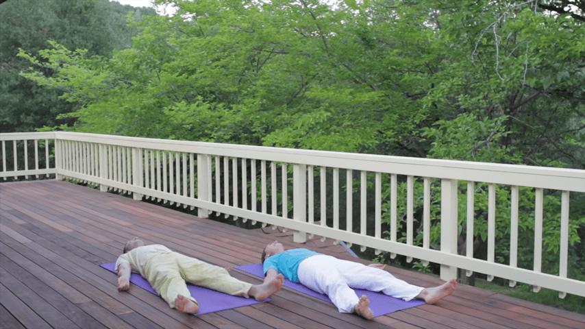Sivananda Yoga Asana Sequence in 12 Basic Postures 6 9 screenshot