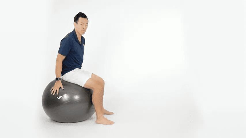 Best Stability Ball Exercises for Lower Back Pain 2 39 screenshot 1