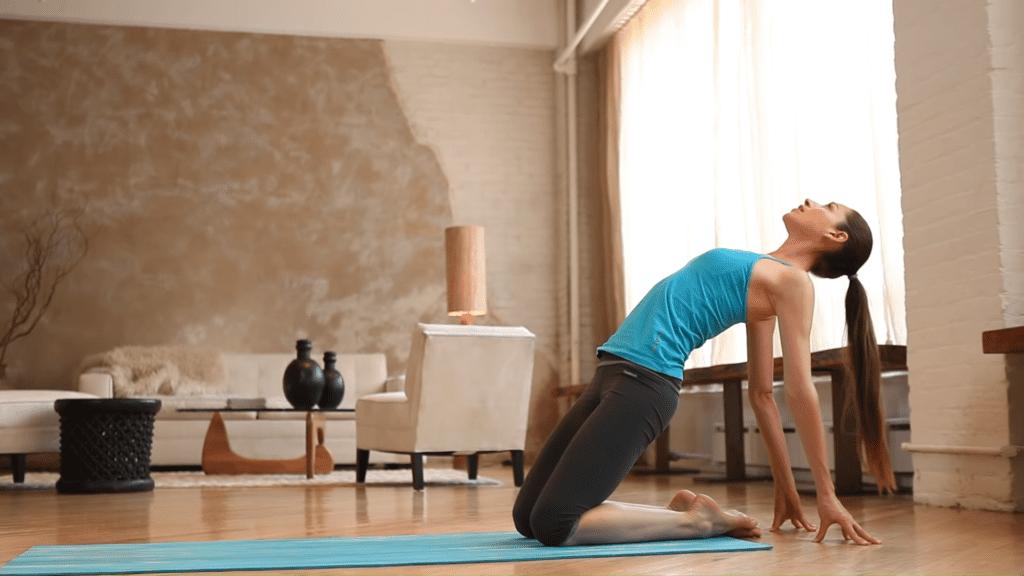 Core Strength Beginner Yoga With Tara Stiles 8 21 screenshot