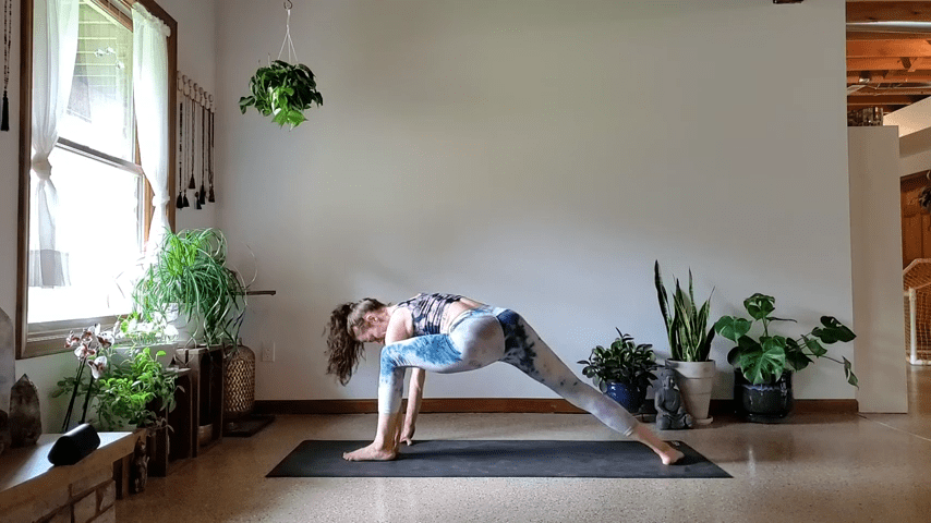 How to do Bird of Paradise Pose in Yoga 1 55 screenshot