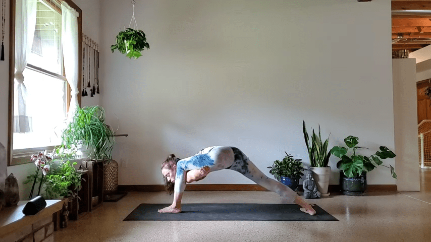 How to do Bird of Paradise Pose in Yoga 2 27 screenshot