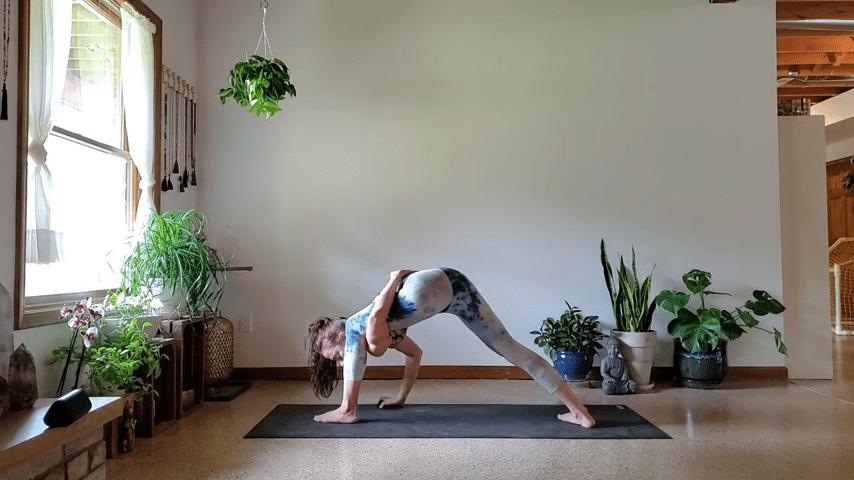 How to do Bird of Paradise Pose in Yoga 2 55 screenshot