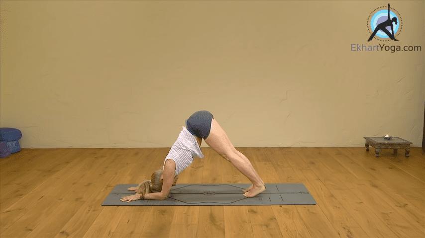 Playing Dolphin Pose into Forearm Balance Yoga with Esther Ekhart 2 49 screenshot
