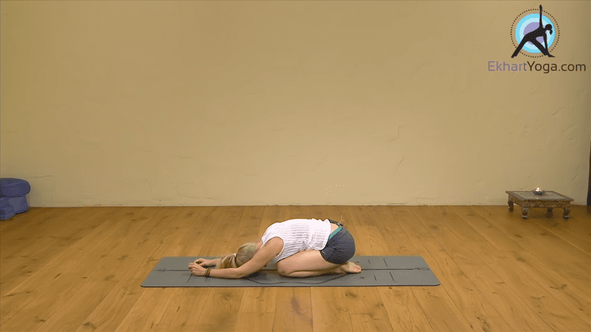 Playing Dolphin Pose into Forearm Balance Yoga with Esther Ekhart 3 1 screenshot
